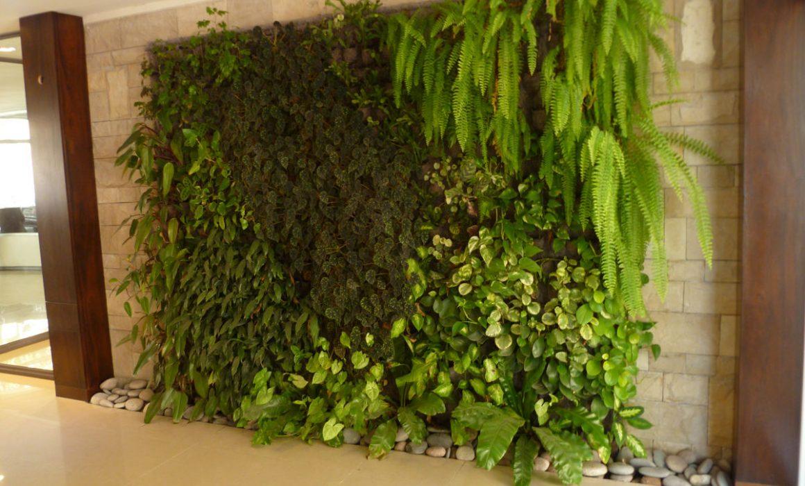 Jardines verticales a decorar mi casa for Jardines verticales casa